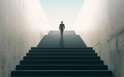 Accompagner les entreprises à réaliser leur stratégie commerciale
